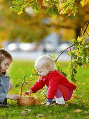 Leaf Gathering